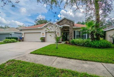 6113 Whimbrelwood Drive Lithia FL 33547