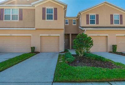 8740 Turnstone Haven Place Tampa FL 33619