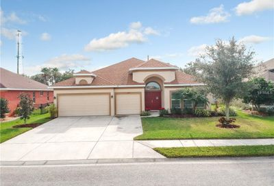11233 77th Street E Parrish FL 34219