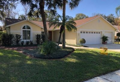 1231 Willowick Circle Safety Harbor FL 34695