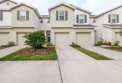 8815 Turnstone Haven Place Tampa FL 33619