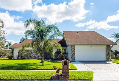 11315 Torrey Pines Drive Riverview FL 33579