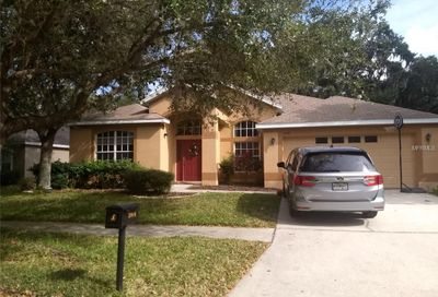 5916 Tealwater Place Lithia FL 33547