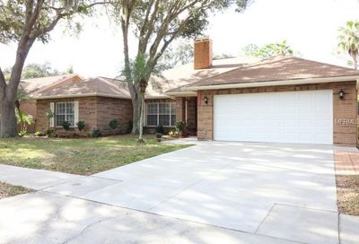 12120 Shady Forest Drive Riverview FL 33569