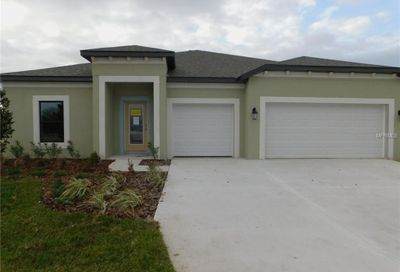 7451 Sweeter Tide Trail Wesley Chapel FL 33545