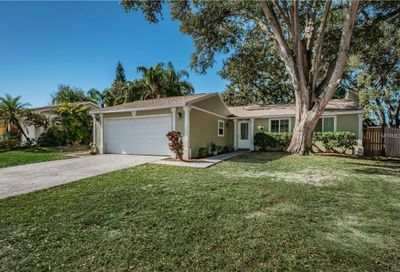 3010 Hanna Court Palm Harbor FL 34684