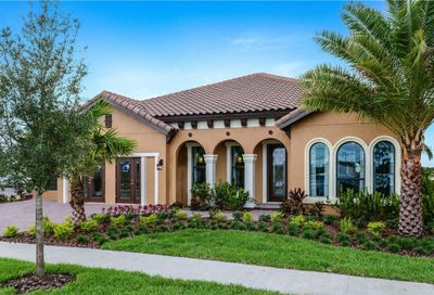 11889 Frost Aster Drive Riverview FL 33579
