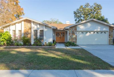 3110 Glenwood Court Safety Harbor FL 34695