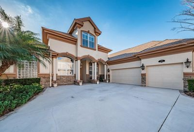 1544 Parilla Circle Trinity FL 34655