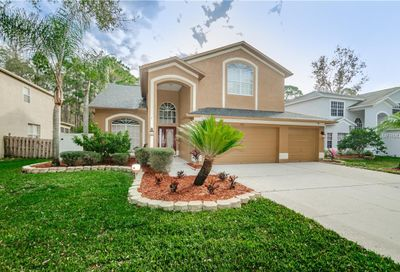 1999 Otter Way Palm Harbor FL 34685