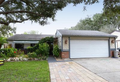 3077 Cinnamon Boulevard Palm Harbor FL 34684