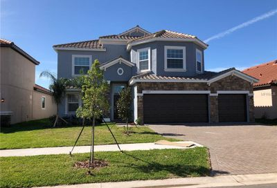 12015 Cinnamon Fern Drive Riverview FL 33579