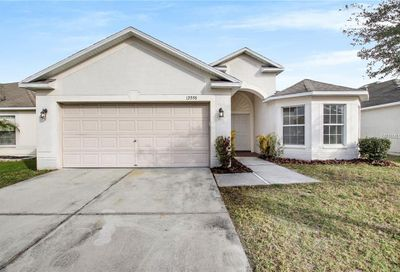 12008 Hampshire Field Court Riverview FL 33579