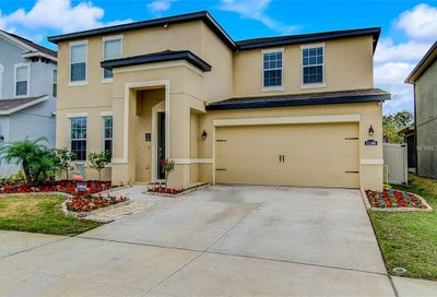 11166 Spring Point Circle Riverview FL 33579