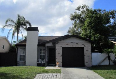 11109 Cherrywood Lane Riverview FL 33579