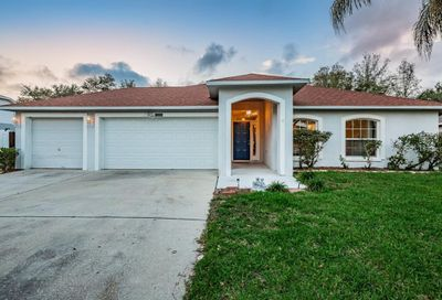 11313 Andy Drive Riverview FL 33569