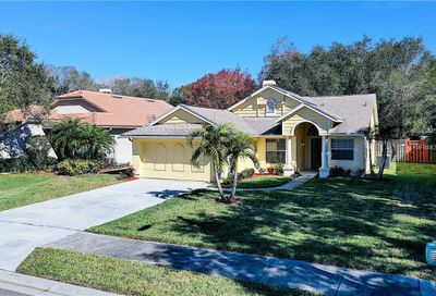 1210 Woodcrest Avenue Safety Harbor FL 34695