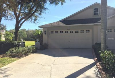 19107 White Wing Place Tampa FL 33647