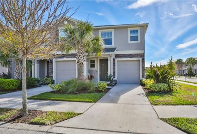 10405 Yellow Spice Court Riverview FL 33578