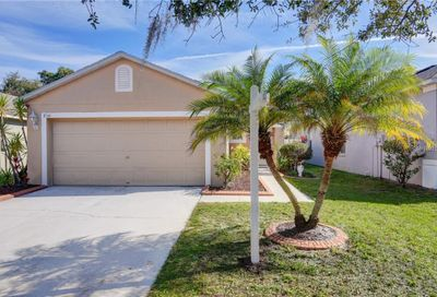 8541 Deer Chase Drive Riverview FL 33578