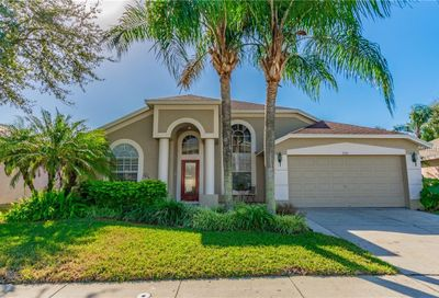 18104 Palm Breeze Drive Tampa FL 33647