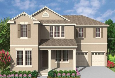 10019 Little Alcove Drive Winter Garden FL 34787