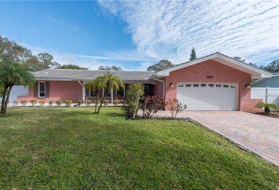 1001 Grovewood Court Clearwater FL 33764