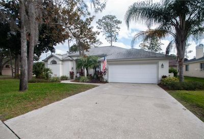 1059 Elk Way Oldsmar FL 34677