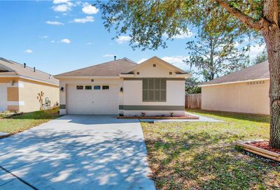 11106 Robin Lake Court Riverview FL 33569