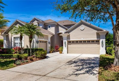 8310 Old Town Drive Tampa FL 33647