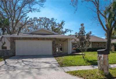 3133 Hillside Lane Safety Harbor FL 34695