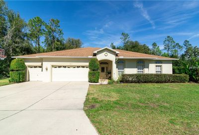 36827 Summers Ridge Drive Dade City FL 33525