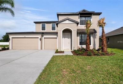 12252 Blue Pacific Drive Riverview FL 33579