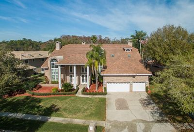 1338 Preservation Way Oldsmar FL 34677