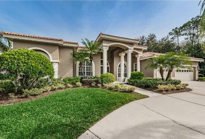 2191 Muirfield Way Oldsmar FL 34677