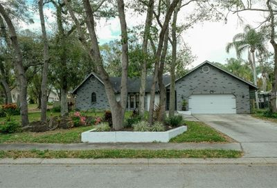 2853 Lake Valencia Boulevard E Palm Harbor FL 34684
