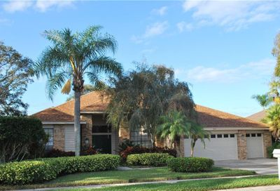 730 Belted Kingfisher Drive N Palm Harbor FL 34683