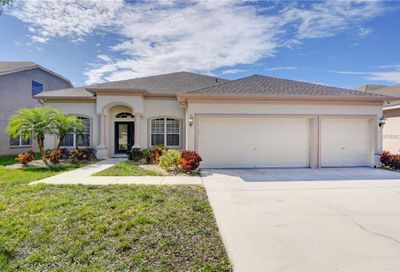 11807 Summer Springs Drive Riverview FL 33579