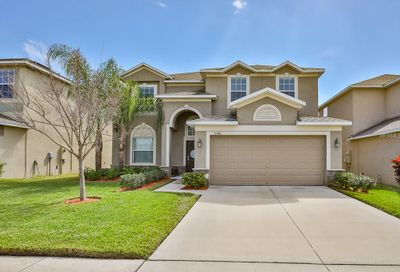 2346 Dovesong Trace Drive Ruskin FL 33570