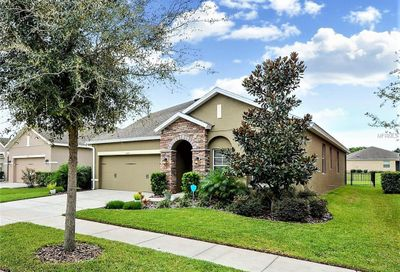 15711 Courtside View Drive Lithia FL 33547