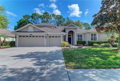 5109 Abisher Wood Lane Brandon FL 33511