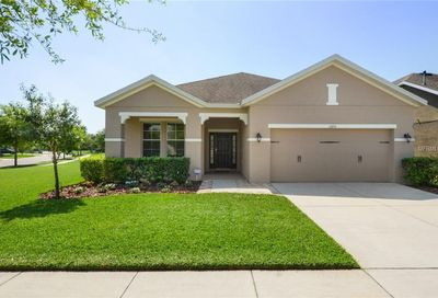 15713 Courtside View Drive Lithia FL 33547