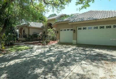 4908 Turtle Creek Trail Oldsmar FL 34677