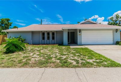 2405 Hawk Avenue Palm Harbor FL 34683