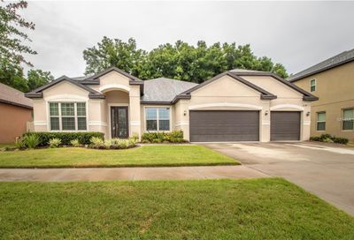 11338 American Holly Drive Riverview FL 33578