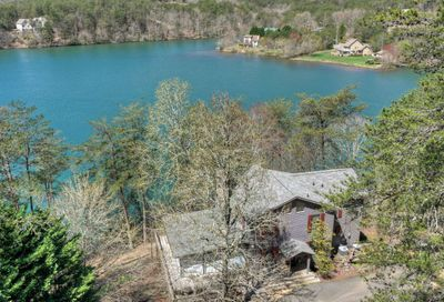 119 Lakeview Point Turtletown TN 37391