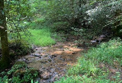 Coopers Creek Drive Suches GA 30572