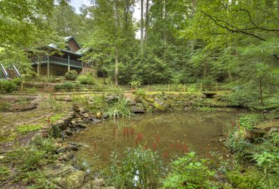 250 Peaceful Path Ellijay GA 30536