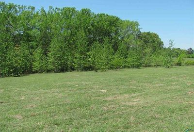 Tbd County Road 442 Lindale TX 75771