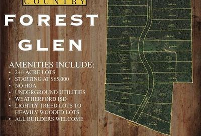Lot 6 Forest Glen Road Weatherford TX 76087